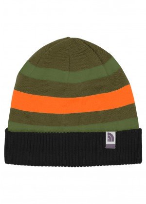 TNF Youth Pete N Repeat Beanie (TNF Black/Forest Night Green)