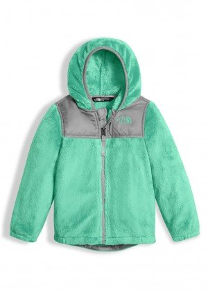 The North Face Toddler Girls Oso Hoodie - WinterKids.com